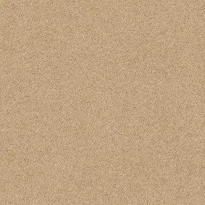 Shaw Floors Caress By Shaw Cashmere III Lg Manilla 00221_CC11B