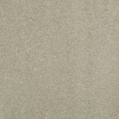 Shaw Floors Caress By Shaw Cashmere III Lg Spruce 00321_CC11B