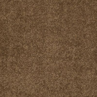 Shaw Floors Caress By Shaw Cashmere III Lg Tobacco Leaf 00723_CC11B