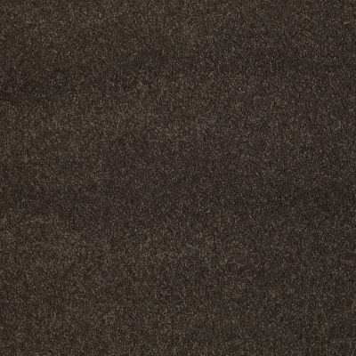 Shaw Floors Caress By Shaw Cashmere III Lg Chestnut 00726_CC11B