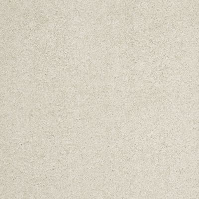 Shaw Floors Caress By Shaw Cashmere Iv Lg Cheviot 00104_CC12B