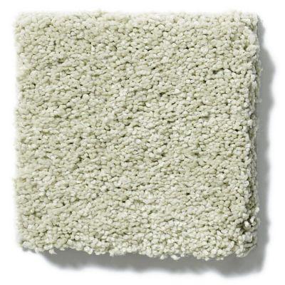 Shaw Floors SFA Cashmere Iv Lg Celadon 00322_CC12B
