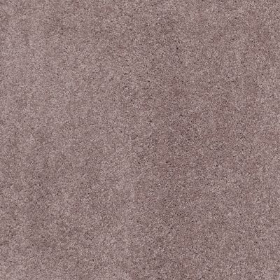Shaw Floors Caress By Shaw Cashmere Iv Lg Heather 00922_CC12B