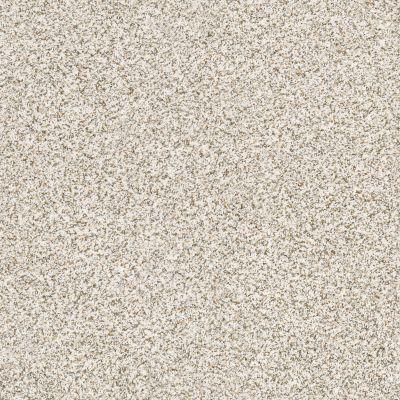 Shaw Floors SFA Devon Classic I Lg Breton 0140B_CC13B