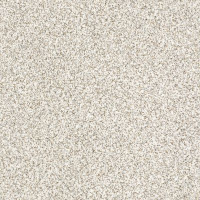 Shaw Floors SFA Devon Classic II Lb Baybridge 0440B_CC14B