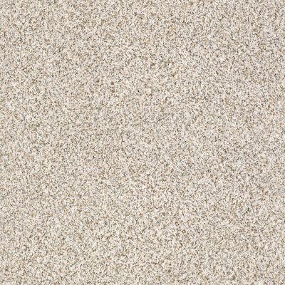 Shaw Floors Caress By Shaw Devon Classic II Lg Heath 0540B_CC14B