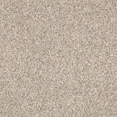 Shaw Floors SFA Devon Classic II Lb Granite 0741B_CC14B