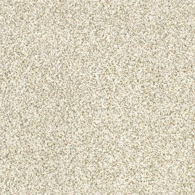 Shaw Floors Caress By Shaw Devon Classic III Lg Cliff 0144B_CC15B