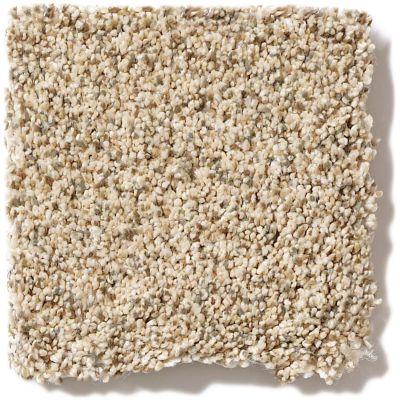 Shaw Floors SFA Devon Classic III Lg Toasted Grain 0241B_CC15B