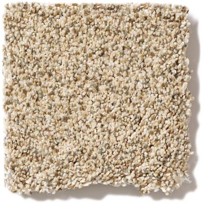 Shaw Floors SFA Devon Classic Iv Lg Toasted Grain 0241B_CC16B