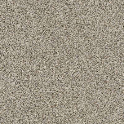 Shaw Floors SFA Devon Classic Iv Lg Drizzle 0340B_CC16B