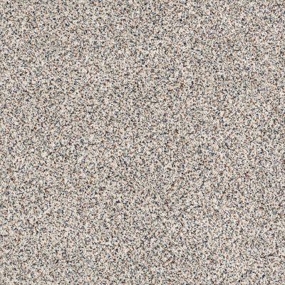 Shaw Floors SFA Angora Classic I Lg Cobblestone 0551A_CC17B