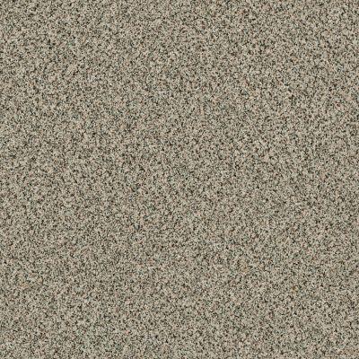 Shaw Floors SFA Angora Classic II Lg Dartmoor 0136A_CC18B