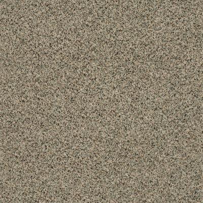 Shaw Floors SFA Angora Classic III Lg Wensleydale 0733A_CC19B