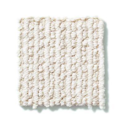 Shaw Floors SFA All At Once Lg Soft Fleece 00101_CC21B