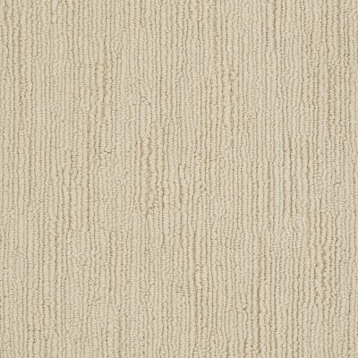 Shaw Floors Caress By Shaw Linenweave Classic Lg Santa Cruz 00106_CC24B