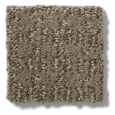 Shaw Floors SFA Luxe Classic Lg Tibetan Plateau 00504_CC25B