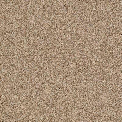Shaw Floors Caress By Shaw Milford Sound Lg Fawn 00110_CC26B