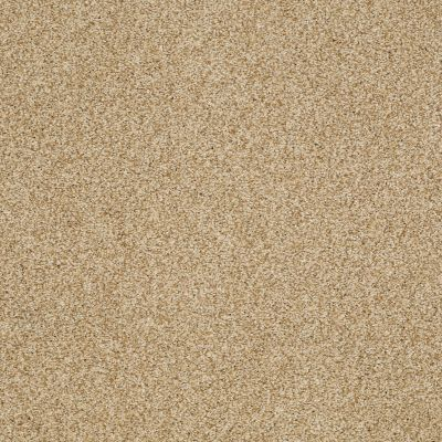 Shaw Floors Caress By Shaw Milford Sound Lg Camel 00201_CC26B