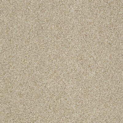 Shaw Floors Caress By Shaw Milford Sound Lg Romney Marsh 00300_CC26B