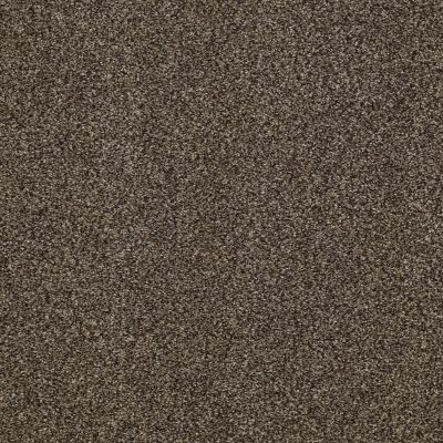Shaw Floors Caress By Shaw Milford Sound Lg Bourbonnais Grey 00505_CC26B