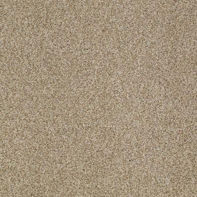 Shaw Floors Caress By Shaw Milford Sound Lg Llama 00701_CC26B