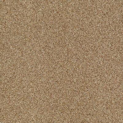 Shaw Floors Caress By Shaw Milford Sound Lg Navajo 00703_CC26B