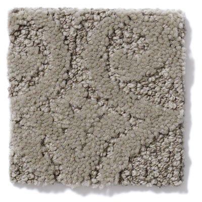 Shaw Floors SFA Modern Amenities Lg Birch Bark 00522_CC27B