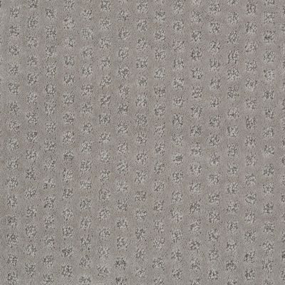 Shaw Floors Caress By Shaw My Expression Lg Lady In Grey 00554_CC28B
