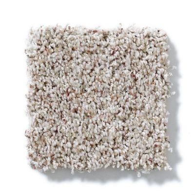 Shaw Floors SFA Subtle Flair Lg Soft Fleece 00101_CC29B