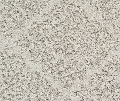 Shaw Floors Caress By Shaw Chateau Fare Lg Net Meditative 00501_CC33B