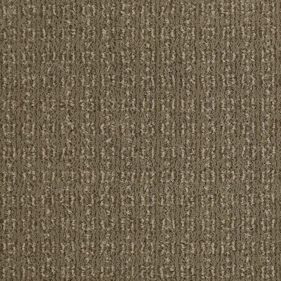 Shaw Floors Value Collections Luxe Classic Lg Net Welsh Hill 00704_CC44B