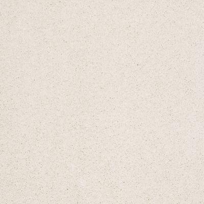 Shaw Floors Value Collections Cashmere I Lg Net Icelandic 00100_CC47B