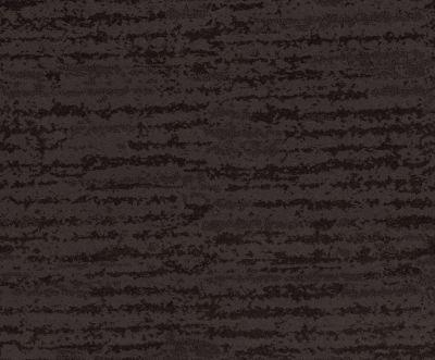 Shaw Floors Caress By Shaw Winter Solace Burma Brown 00752_CC68B
