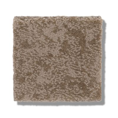 Shaw Floors Caress By Shaw Free Spirit Tumbleweed 00749_CC70B