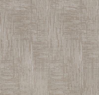 Shaw Floors Caress By Shaw Insightful Journey Minimal 00514_CC71B
