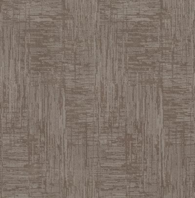 Shaw Floors Caress By Shaw Insightful Journey Stucco 00724_CC71B