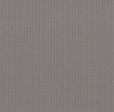 Shaw Floors Caress By Shaw Soft Symmetry Grounded Gray 00536_CC74B