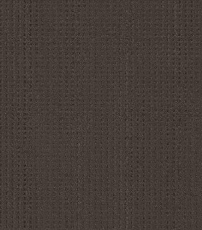 Shaw Floors Caress By Shaw Soft Symmetry Burma Brown 00752_CC74B