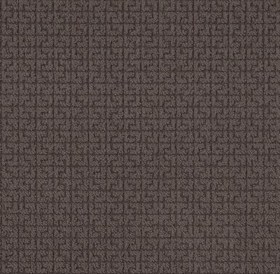 Shaw Floors Caress By Shaw Serene Key Burma Brown 00752_CC76B