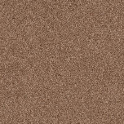 Shaw Floors Caress By Shaw Cozy Harbor II Sunbaked 00650_CC79B