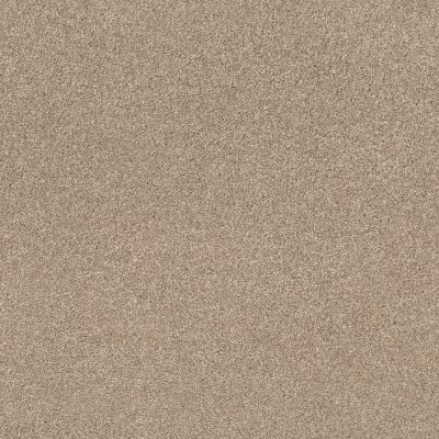 Shaw Floors Caress By Shaw Cozy Harbor II Natural Beauty 00721_CC79B