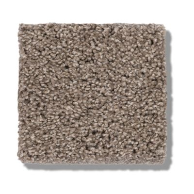 Shaw Floors Caress By Shaw Cozy Harbor II Tumbleweed 00749_CC79B