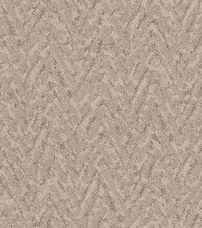 Shaw Floors Caress By Shaw Lavish Living Natural Beauty 00721_CC80B