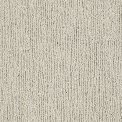 Shaw Floors Caress By Shaw Refined Indulgence Shetland 00108_CCB44
