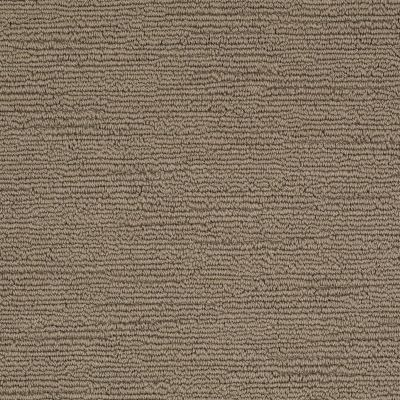 Shaw Floors Caress By Shaw Refined Indulgence Tibetan Plateau 00504_CCB44