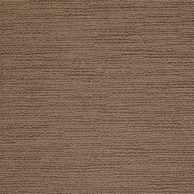 Shaw Floors Caress By Shaw Refined Indulgence Pebble Creek 00706_CCB44