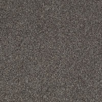 Shaw Floors Caress By Shaw Egmont Alaskan Musk 00506_CCB61