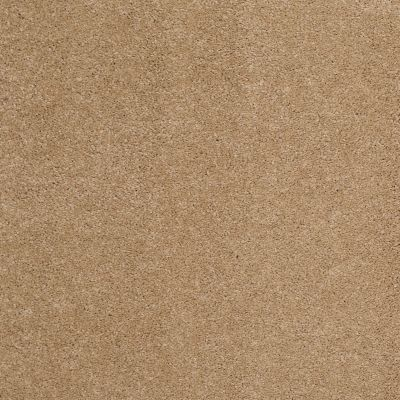 Shaw Floors Caress By Shaw Quiet Comfort Classic I Brass Lantern 00222_CCB96