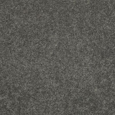 Shaw Floors Caress By Shaw Quiet Comfort Classic I Onyx 00528_CCB96